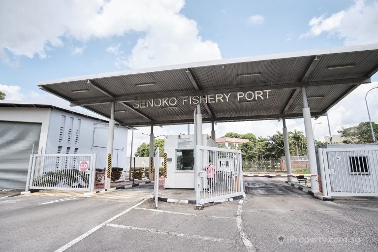 Entrance of Senoko Fishery Port. Picture: iProperty