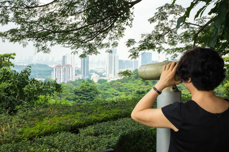 A tourist viewing Singapore's cityscape by binoculars from Mount Faber